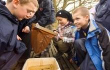 Pond-dipping at Leighton Moss